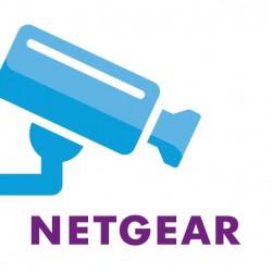 NETGEAR READYNAS 4 CAMERA LICENSES, RNNVR04L